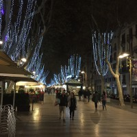Photo: Christmasy Walkways