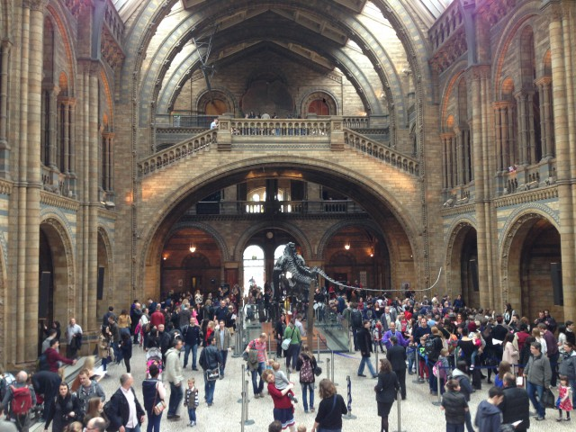 Photo: Natural History Museum