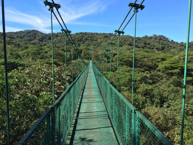 Photo: Hanging Bridges