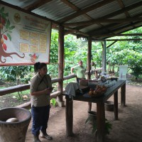 Monteverde Chocolate Tour
