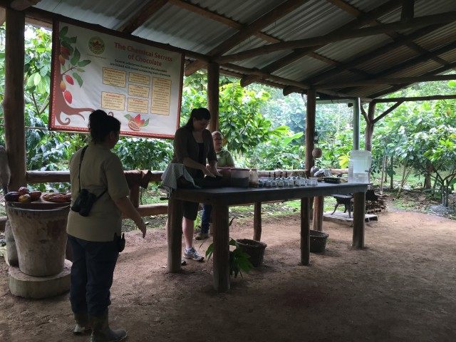 Photo: Monteverde Chocolate Tour